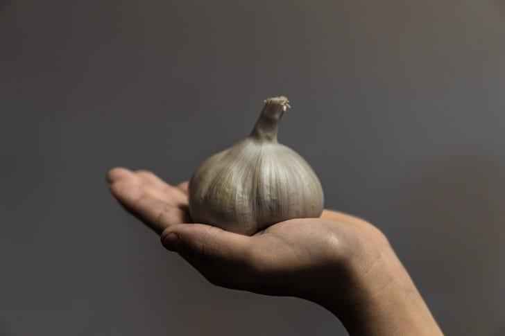 garlic-3