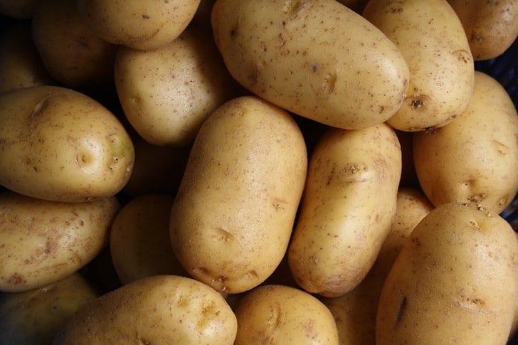 potato-protein-1